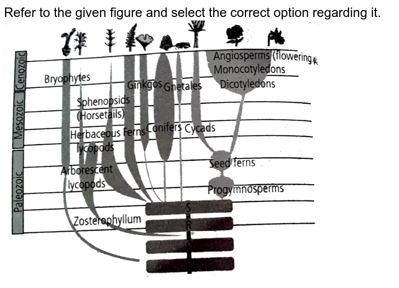 """Refer to the given figure and select the correct option regarding it. <br> <img src=""""https://d10lpgp6xz60nq.cloudfront.net/physics_images/NCERT_FING_BIO_OBJ_XII_EVO_C07_E01_094_Q01.png"""" width=""""80%"""">"""