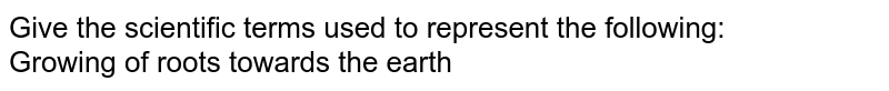 Give the scientific terms used to represent the following: <br> Growing of roots towards the earth