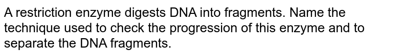 A restriction enzyme digests DNA into fragments. Name the technique used to check the progression of this enzyme and to separate the DNA fragments.