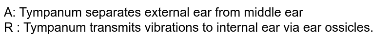 A: Tympanum separates external ear from middle ear <br> R : Tympanum transmits vibrations to internal ear via ear ossicles.