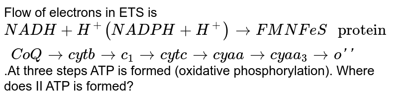 """Flow of electrons in ETS is `NADH + H^+ (NADPH +H^+) to FMN FeS"""" protein """"CoQto cytb toc_1tocytctocya atocyaa_3too''`.At three steps ATP is formed (oxidative phosphorylation). Where does II ATP is formed?"""