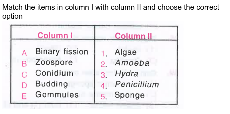 """Match the items in column I with column II and choose the correct option <br> <img src=""""https://d10lpgp6xz60nq.cloudfront.net/physics_images/OBJ_NEET_BIO_V02_C23_E01_097_Q01.png"""" width=""""80%"""">"""