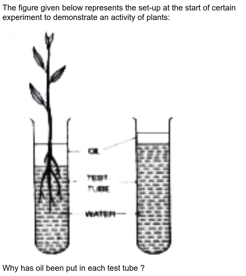 """The figure given below represents the set-up at the start of certain experiment to demonstrate an activity of plants: <br> <img src=""""https://doubtnut-static.s.llnwi.net/static/physics_images/EVR_ANM_ICSE_BIO_X_C03_E01_063_Q01.png"""" width=""""80%""""> <br> Why has oil been put in each test tube ?"""