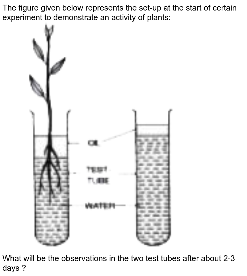 """The figure given below represents the set-up at the start of certain experiment to demonstrate an activity of plants: <br> <img src=""""https://doubtnut-static.s.llnwi.net/static/physics_images/EVR_ANM_ICSE_BIO_X_C03_E01_064_Q01.png"""" width=""""80%""""> <br> What will be the observations in the two test tubes after about 2-3 days ?"""