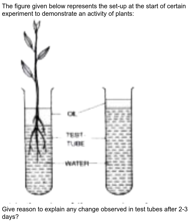"""The figure given below represents the set-up at the start of certain experiment to demonstrate an activity of plants: <br> <img src=""""https://doubtnut-static.s.llnwi.net/static/physics_images/EVR_ANM_ICSE_BIO_X_C03_E01_065_Q01.png"""" width=""""80%""""> <br> Give reason to explain any change observed in test tubes after 2-3 days?"""
