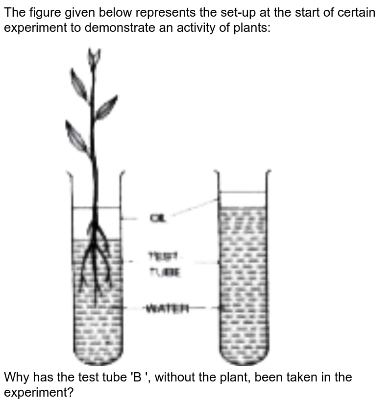 """The figure given below represents the set-up at the start of certain experiment to demonstrate an activity of plants: <br> <img src=""""https://doubtnut-static.s.llnwi.net/static/physics_images/EVR_ANM_ICSE_BIO_X_C03_E01_066_Q01.png"""" width=""""80%""""> <br> Why has the test tube 'B ', without the plant, been taken in the experiment?"""
