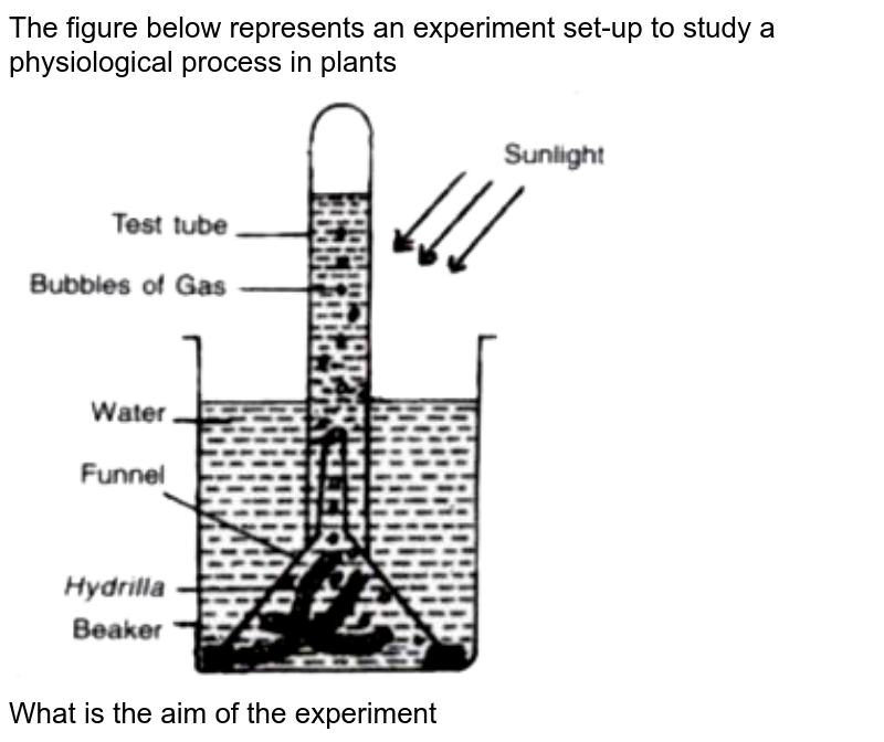 """The figure below represents an experiment set-up to study a physiological process in plants <br> <img src=""""https://doubtnut-static.s.llnwi.net/static/physics_images/EVR_ANM_ICSE_BIO_X_C05_E01_136_Q01.png"""" width=""""80%""""> <br> What is the aim of the experiment"""