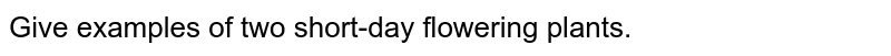 Give examples of two short-day flowering plants.