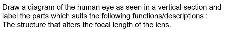 Draw a diagram of the human eye as seen in a vertical section and label the parts which suits the following functions/descriptions : <br> The structure that alters the focal length of the lens.