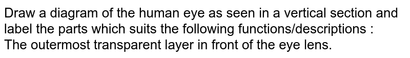 Draw a diagram of the human eye as seen in a vertical section and label the parts which suits the following functions/descriptions : <br> The outermost transparent layer in front of the eye lens.