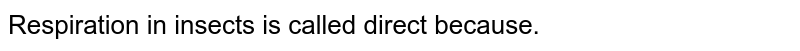 Respiration in insects is called direct because.