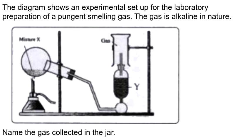 """The diagram shows an experimental set up for the laboratory preparation of a pungent smelling gas. The gas is alkaline in nature. <br> <img src=""""https://doubtnut-static.s.llnwi.net/static/physics_images/EVR_BLK_ICSE_CHE_X_C09_E03_037_Q01.png"""" width=""""80%"""">  <br> Name the gas collected in the jar."""