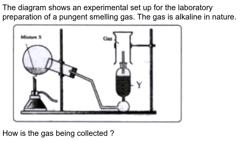 """The diagram shows an experimental set up for the laboratory preparation of a pungent smelling gas. The gas is alkaline in nature. <br> <img src=""""https://doubtnut-static.s.llnwi.net/static/physics_images/EVR_BLK_ICSE_CHE_X_C09_E03_039_Q01.png"""" width=""""80%"""">  <br> How is the gas being collected ?"""