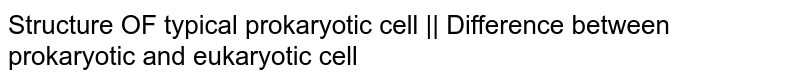 Structure OF typical prokaryotic cell    Difference between prokaryotic and eukaryotic cell