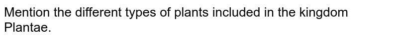 Mention the different types of plants included in the kingdom Plantae.