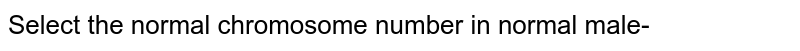 Select the normal chromosome number in normal male-