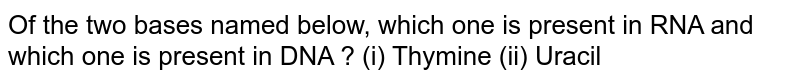 Of the two bases named below, which one is present in RNA and which one is present in DNA ? (i) Thymine (ii) Uracil