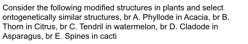 Consider the following modified structures in plants and select ontogenetically similar structures, br A. Phyllode in Acacia, br B. Thorn in Citrus, br C. Tendril in watermelon, br D. Cladode in Asparagus, br E. Spines in cacti