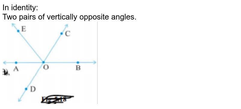 In identity: <br> Two pairs of vertically opposite angles.