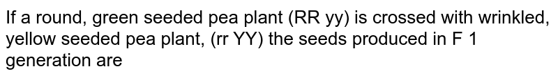 If a round, green seeded pea plant (RR yy) is crossed with wrinkled, yellow seeded pea plant, (rr YY) the seeds produced in F 1 generation are