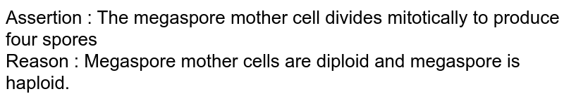 Assertion : The megaspore mother cell divides mitotically to produce four spores <br> Reason : Megaspore mother cells are diploid and megaspore is haploid.