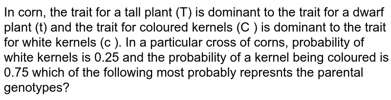 In corn, the trait for a tall plant (T) is dominant to the trait for a dwarf plant (t) and the trait for coloured kernels (C ) is dominant to the trait for white kernels (c ). In a particular cross of corns, probability of white kernels is 0.25 and the probability of a kernel being coloured is 0.75 which of the following most probably represnts the parental genotypes?