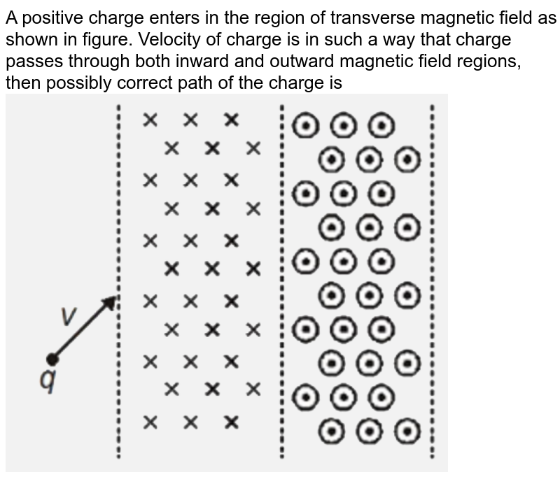 """A positive charge enters in the region of transverse magnetic field as shown in figure. Velocity of charge is in such a way that charge passes through both inward and outward magnetic field regions, then possibly correct path of the charge is <br> <img src=""""https://d10lpgp6xz60nq.cloudfront.net/physics_images/NTA_NEET_SET_116_E01_019_Q01.png"""" width=""""80%"""">"""