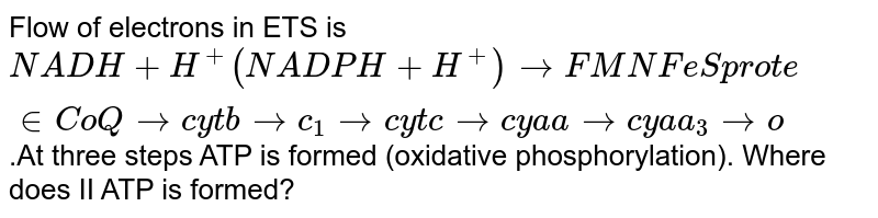 """Flow of electrons in ETS is `NADH + H^+ (NADPH +H^+) to FMN FeS"""" protein """"CoQto cytb <br> to c_1tocytctocya atocyaa_3too''`.At three steps ATP is formed (oxidative phosphorylation). Where does II ATP is formed?"""