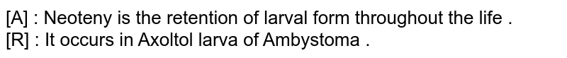 [A] : Neoteny is the retention of larval form throughout the life . <br> [R] : It occurs in Axoltol larva of Ambystoma .