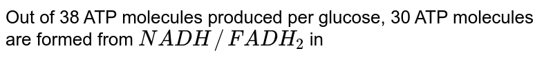 Out of 38 ATP molecules produced per glucose, 30 ATP molecules are formed from `NADH//FADH_2` in