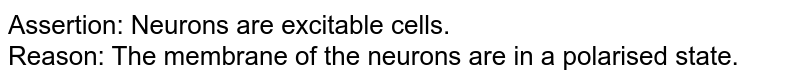 Assertion: Neurons are excitable cells. <br> Reason: The membrane of the neurons are in a polarised state.
