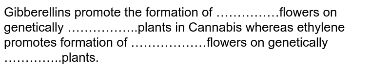 Gibberellins promote the formation of ……………flowers on genetically ……………..plants in Cannabis whereas ethylene promotes formation of ………………flowers on genetically …………..plants.
