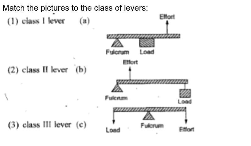 """Match the pictures to the class of levers: <br> <img src=""""https://doubtnut-static.s.llnwi.net/static/physics_images/EPH_SKG_IIT_SCI_VIII_C03_E02_014_Q01.png"""" width=""""80%"""">"""