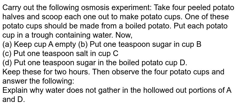 Carry out the following osmosis experiment: Take four peeled potato halves and scoop each one out to make potato cups. One of these potato cups should be made from a boiled potato. Put each  potato cup in a trough containing water. Now,<br> (a) Keep cup A empty (b) Put one teaspoon sugar in cup B<br> (c) Put one teaspoon salt in cup C<br> (d) Put one teaspoon sugar in the boiled potato cup D. <br> Keep these for two hours. Then observe the four potato cups and answer the following: <br> Explain why water does not gather in the hollowed out portions of A and D.