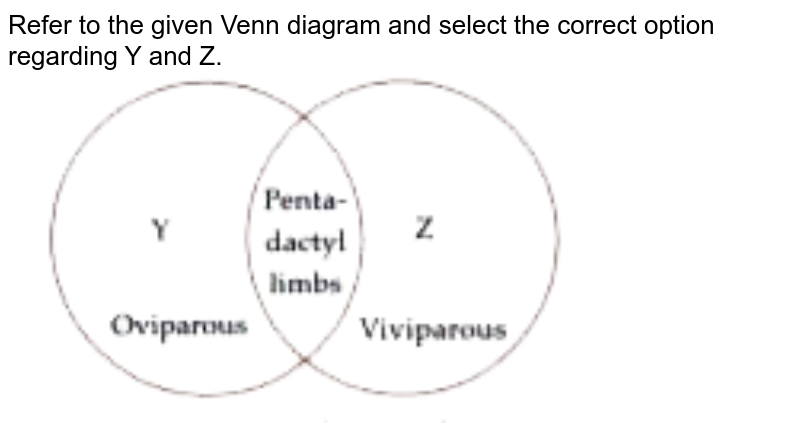 """Refer to the given Venn diagram and select the correct option regarding Y and Z. <br> <img src=""""https://doubtnut-static.s.llnwi.net/static/physics_images/MTG_FOU_COU_BIO_IX_C03_E03_008_Q01.png"""" width=""""80%"""">"""