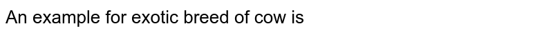 An example for exotic breed of cow is