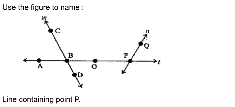 """Use the figure to name : <br> <img src=""""https://doubtnut-static.s.llnwi.net/static/physics_images/SWN_MAT_VI_C08_E01_024_Q01.png"""" width=""""80%""""> <br> Line containing point P."""