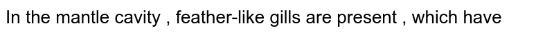 In the mantle cavity , feather-like gills are present , which have