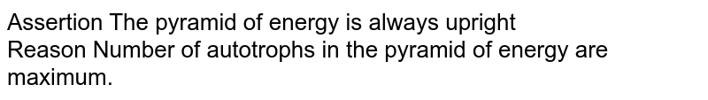 Assertion The pyramid of energy is always upright <br> Reason Number of autotrophs in the pyramid of energy are maximum.