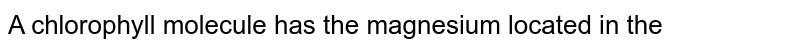 A chlorophyll molecule has the magnesium located in the