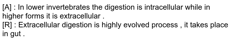 [A] : In lower invertebrates the digestion is intracellular while in higher forms it is extracellular . <br> [R] : Extracellular digestion is highly evolved process  , it takes place in gut .