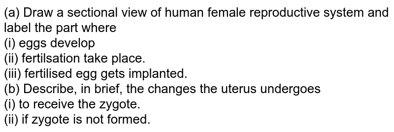 (a) Draw a sectional view of human female reproductive system and label the part where <br> (i) eggs develop <br> (ii) fertilsation take place. <br> (iii) fertilised egg gets implanted. <br> (b) Describe, in brief, the changes  the uterus undergoes <br> (i) to receive the zygote. <br> (ii) if zygote  is not formed.