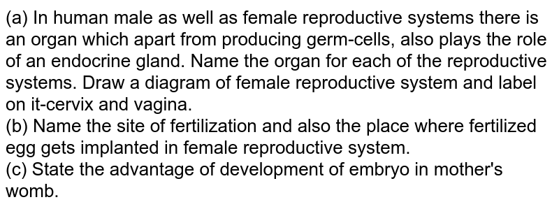 (a) In human male as well as female reproductive systems there is an organ which apart from producing germ-cells, also plays the role of an endocrine gland. Name the organ for each of the reproductive systems. Draw a diagram of female reproductive system and label on it-cervix and vagina. <br> (b) Name the site of fertilization and also the place where fertilized egg gets implanted in female reproductive system. <br> (c) State the advantage of development of embryo in mother's womb.