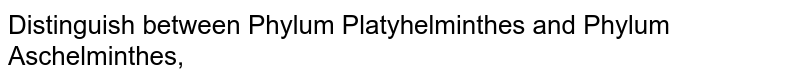 Distinguish between Phylum Platyhelminthes and Phylum Aschelminthes,