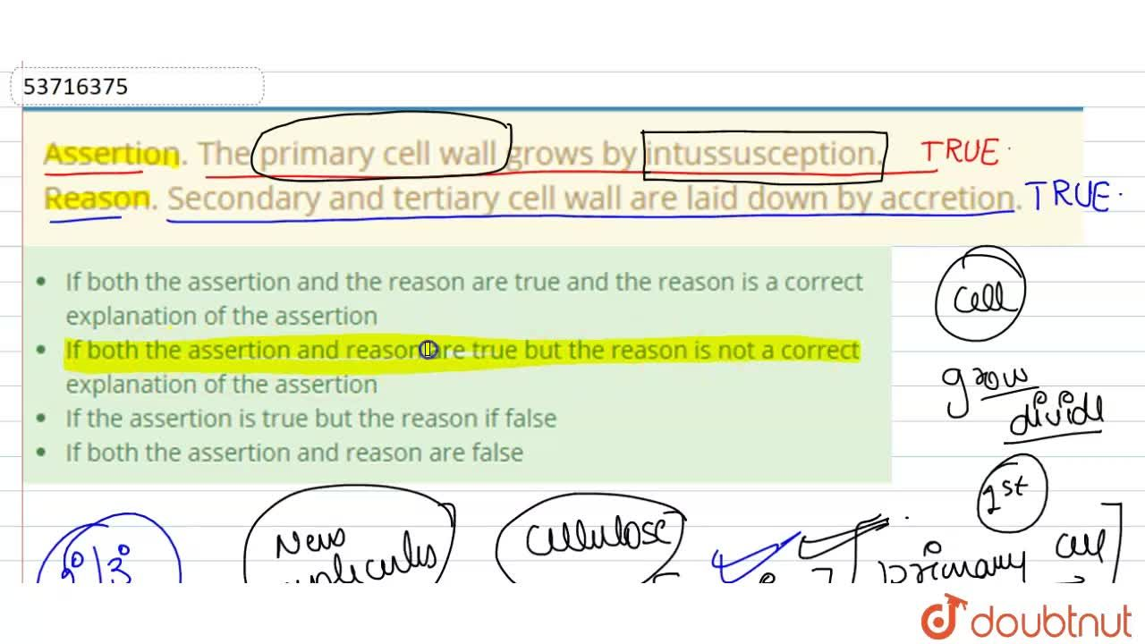 Solution for Assertion. The primary cell wall grows by intussus