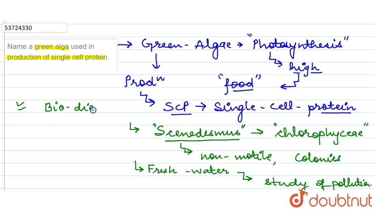 Solution for Name a green alga used in production of single cel
