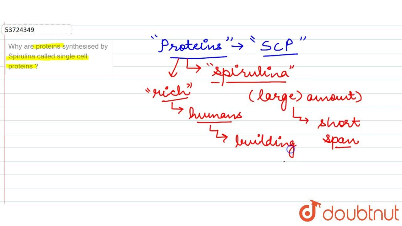 Solution for Why are proteins synthesised by Spirulina called s