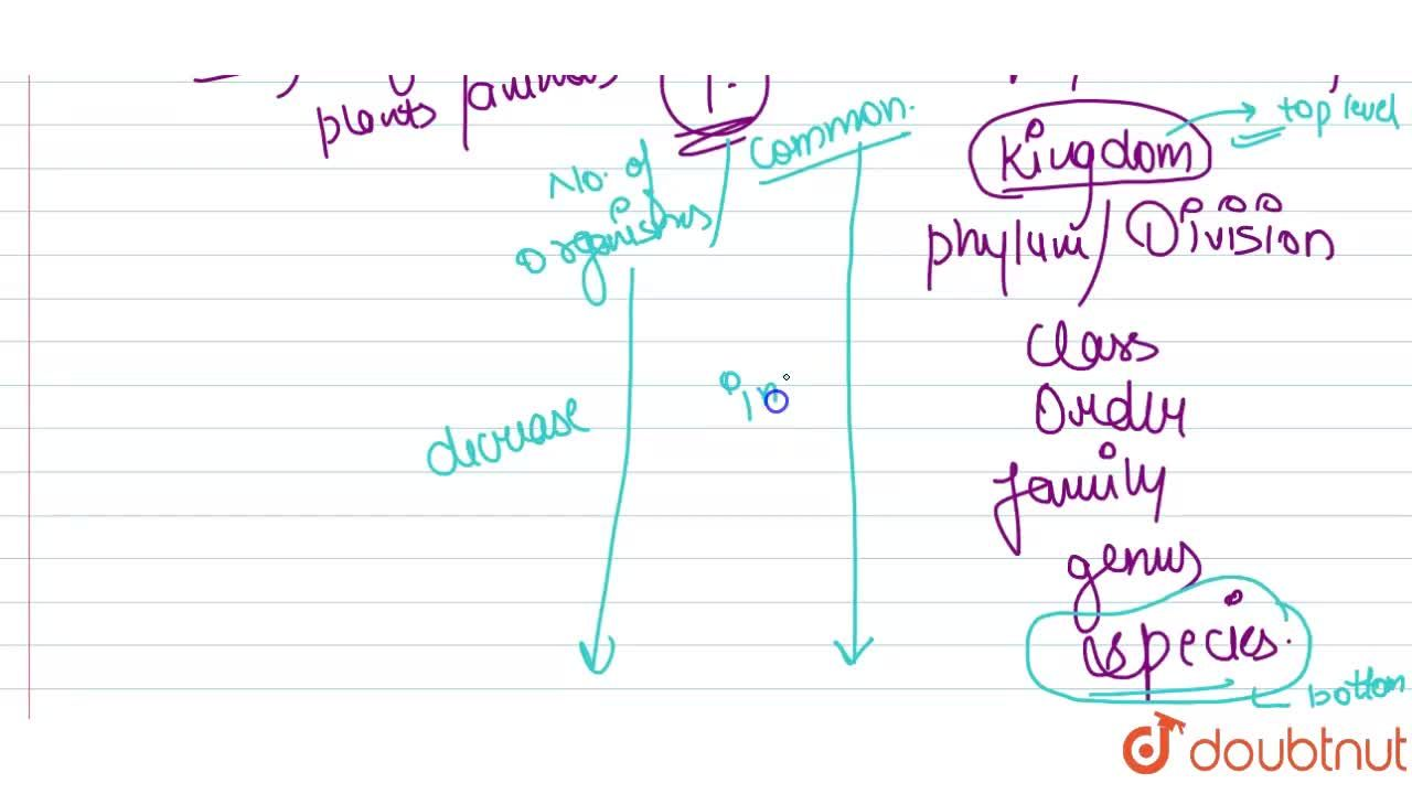 Solution for Explain the terms systematics and hierarchical cla