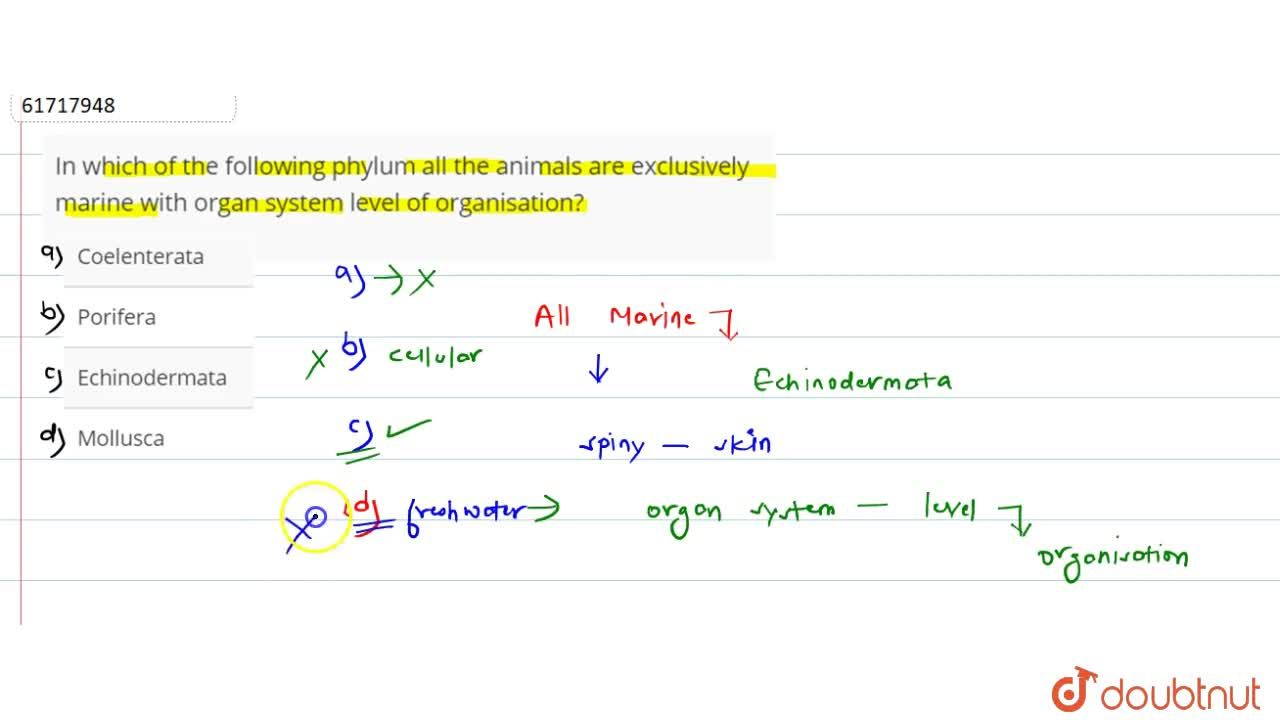 Solution for In which of the following phylum all the animals a
