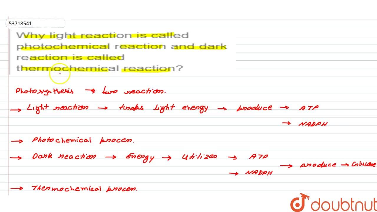 Solution for Why light reaction is called photochemical reactio